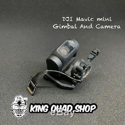DJI Mavic Mini Replacement Gimbal And Camera Assembly OEM